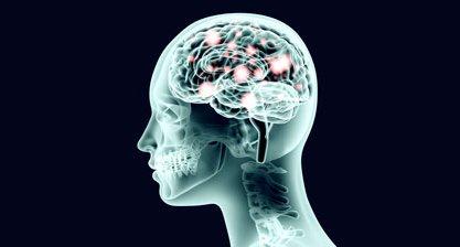 A neuroplasticidade comprova a importância dos desafios