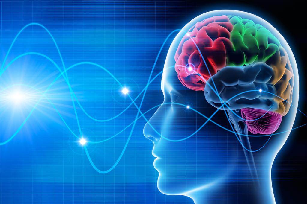 3 dicas da neurociência para se aprender um idioma